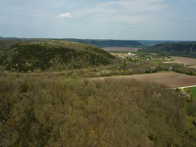 XX17 Deep River Road, Rushford Village, MN 55962 (#5752240) :: Carol Nelson   Edina Realty