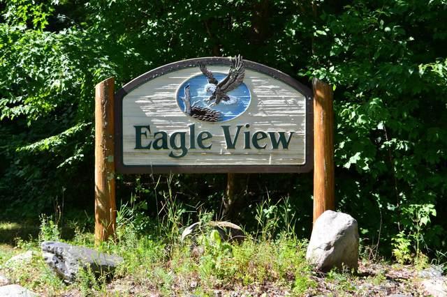 Lot 3 Blk 2 Eagle View Drive, Deerwood, MN 56444 (#5753766) :: The Pietig Properties Group