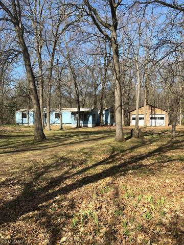 5131 Crow Wing Lake Lane, Fort Ripley, MN 56449 (#5754128) :: The Odd Couple Team