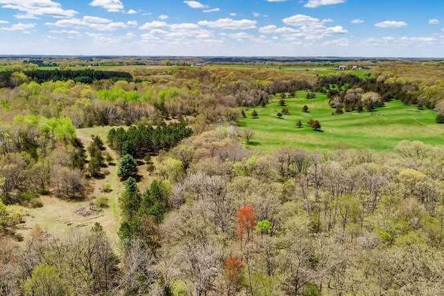xxx N Quail Way, May Twp, MN 55082 (#5754243) :: Twin Cities Elite Real Estate Group | TheMLSonline