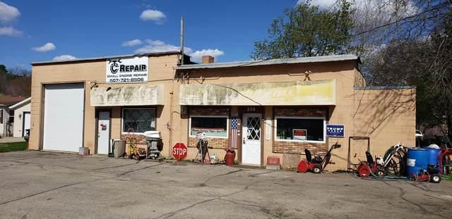 230 N Minnesota Avenue, Oronoco, MN 55960 (#5754634) :: Happy Clients Realty Advisors