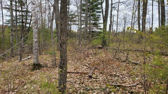 Lot 0 County Highway F, Stone Lake, WI 54876 (#5754864) :: The Janetkhan Group