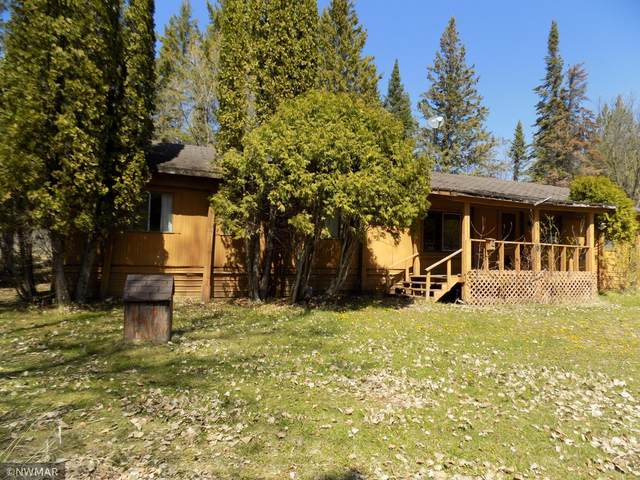 2814 State Highway 172 NW, Baudette, MN 56623 (#5755391) :: Happy Clients Realty Advisors
