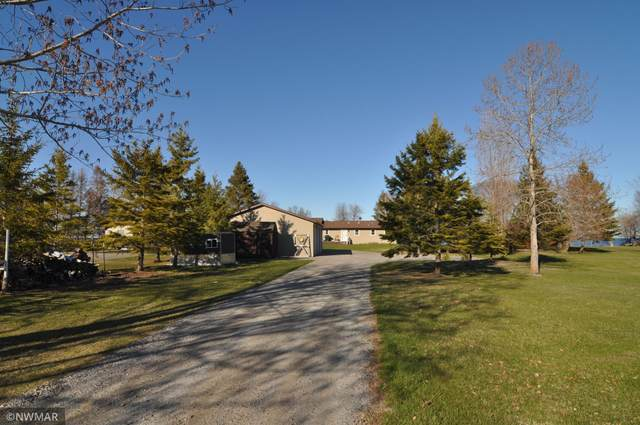 6002 Sandy Shores Drive NW, Williams, MN 56686 (#5755438) :: Happy Clients Realty Advisors