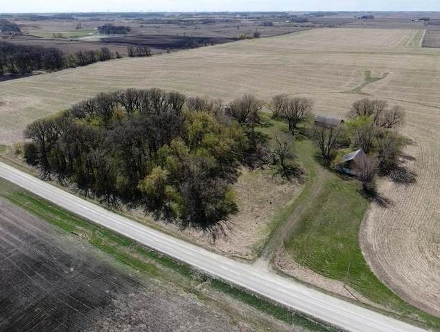 32239 760th Avenue, Ellendale, MN 56026 (#5755958) :: Happy Clients Realty Advisors