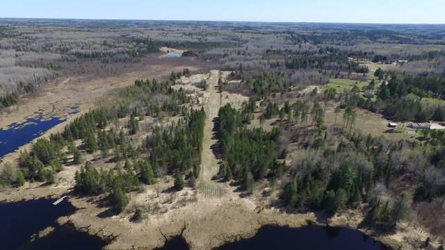 xx46.5 Crane Lake Road, Buyck, MN 55771 (#5756211) :: Lakes Country Realty LLC