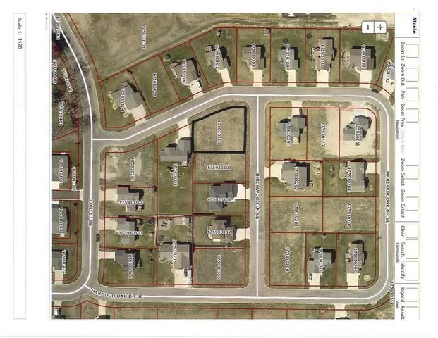 607 Birchwood Lane SE, Owatonna, MN 55060 (#5756295) :: Lakes Country Realty LLC