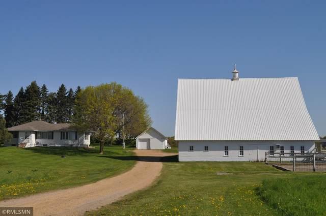 7480 County Road 10, Chaska, MN 55318 (#5756405) :: Lakes Country Realty LLC