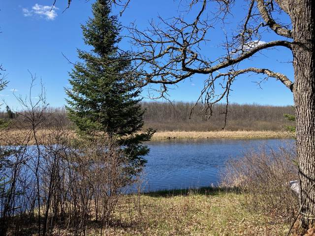 TBD Riise Road, Buyck, MN 55771 (#5756483) :: Lakes Country Realty LLC