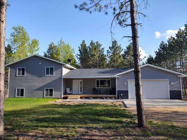 16223 204th Street, Park Rapids, MN 56470 (#5758464) :: The Pietig Properties Group