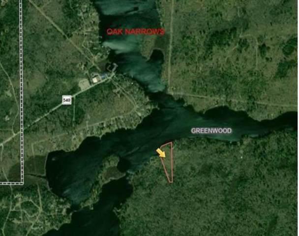 TBD Hinsdale Island, Greenwood Twp, MN 55723 (#5758614) :: The Michael Kaslow Team