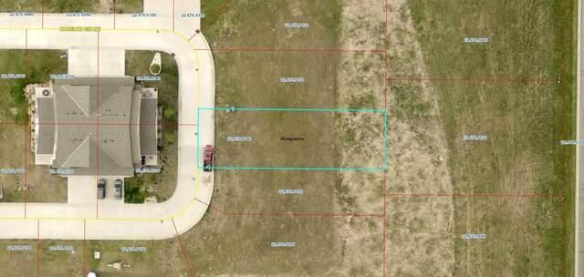 922 Katelyn Circle, Montgomery, MN 56069 (#5759179) :: Holz Group