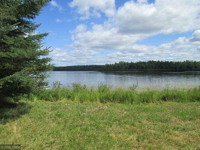 35357 W Johnson Lake Trail, Deer River, MN 56636 (#5759272) :: Bre Berry & Company