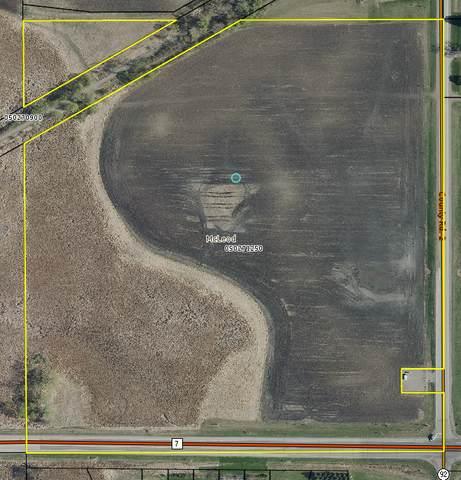 20324 County Road 2, Silver Lake, MN 55381 (#5762969) :: Bos Realty Group