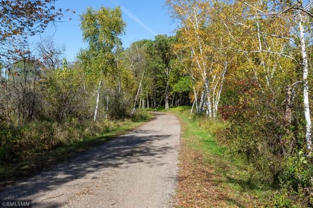 5 S Long Lake Trail, North Oaks, MN 55127 (#5764384) :: Carol Nelson | Edina Realty