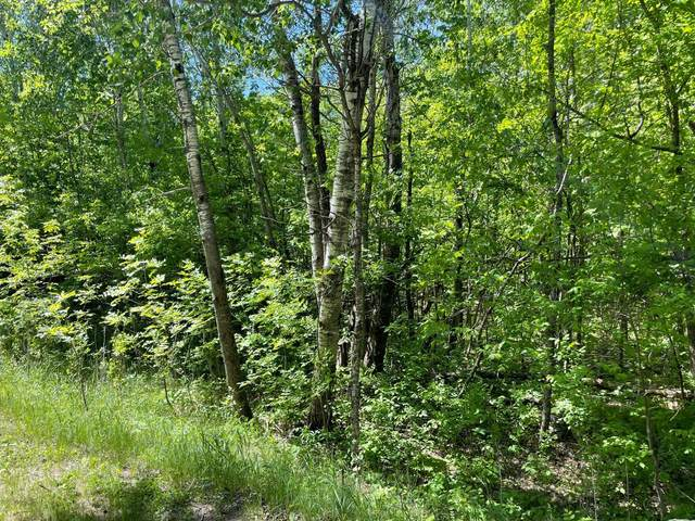 xxx Pine Island Point Dr, Fawn Lake Twp, MN 56438 (#5765766) :: Twin Cities South