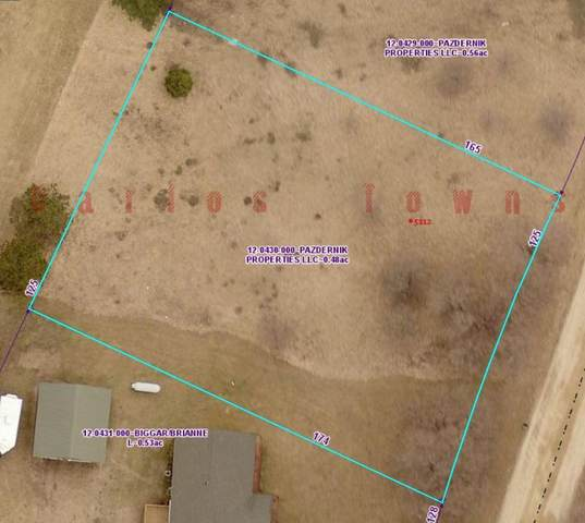 5112 S Riverview Drive NE, Carlos, MN 56319 (#5766784) :: The Jacob Olson Team
