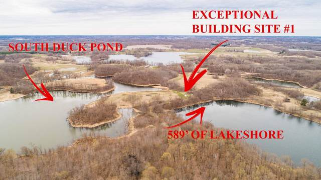 E4478 Tonseth Rd, Friberg Twp, MN 56534 (#5768272) :: Lakes Country Realty LLC
