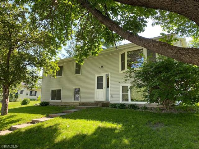 123 N 3rd Street, Le Sueur, MN 56058 (#6001867) :: Straka Real Estate