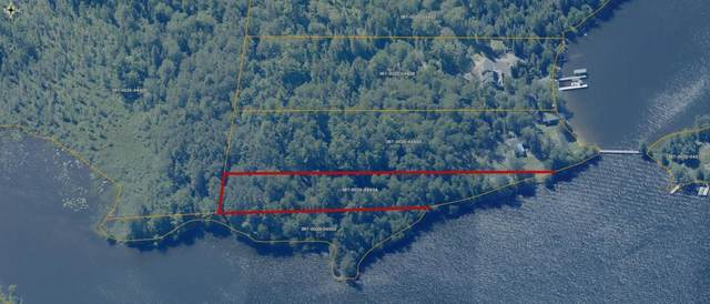 TBD NW Pine Island, Greenwood Twp, MN 55790 (#6002643) :: The Twin Cities Team