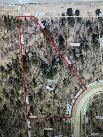 TBD Blue Ridge Drive, Breezy Point, MN 56472 (#6007883) :: The Michael Kaslow Team