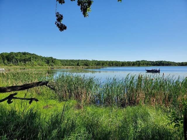 XXX Turner Lake Drive, Crosby, MN 56441 (#6008517) :: Helgeson Platzke Real Estate Group