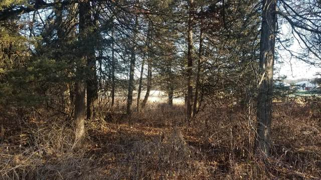 20721 Kiowa Street NW, Oak Grove, MN 55011 (#6008735) :: Carol Nelson | Edina Realty