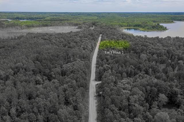 TBD 0215 Woodland Drive, Deer River, MN 56636 (#6008849) :: Lakes Country Realty LLC