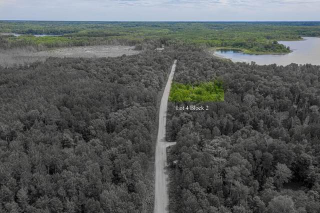 TBD 0220 Woodland Drive, Deer River, MN 56636 (#6008850) :: Lakes Country Realty LLC