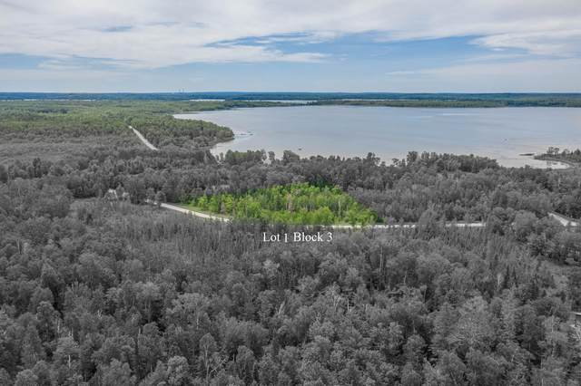 TBD 0310 Cr 238, Deer River, MN 56636 (#6008859) :: Lakes Country Realty LLC