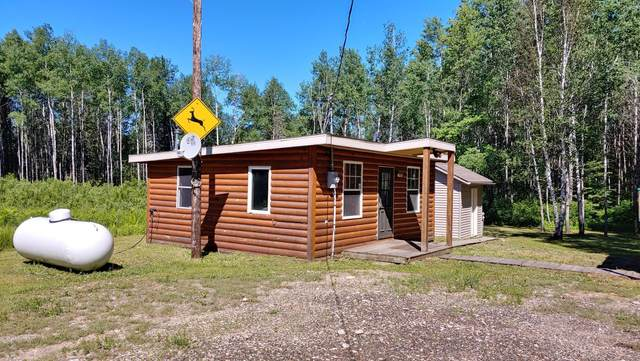 8523 Orr Buyck Road, Orr, MN 55771 (#6009420) :: Tony Farah | Coldwell Banker Realty