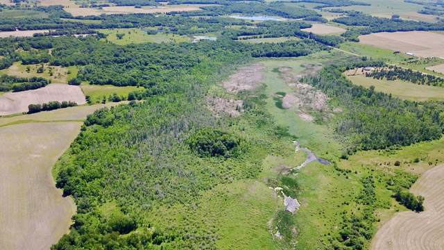 TBD County 48, Long Prairie, MN 56347 (#6011233) :: Lakes Country Realty LLC