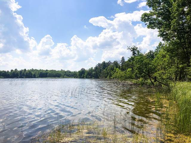 Lot A Gryce Styne Road NE, Bemidji, MN 56601 (#6011313) :: Lakes Country Realty LLC