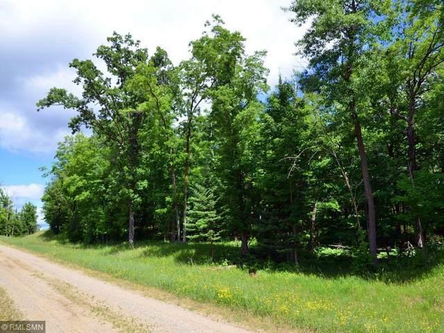 A.B.C. Holiday Road, Park Rapids, MN 56470 (#6012996) :: Carol Nelson | Edina Realty