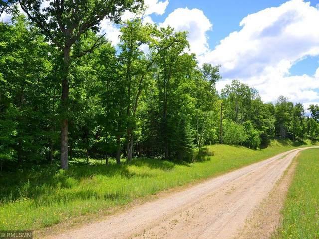 D.E.F. Holiday Road, Park Rapids, MN 56470 (#6013004) :: Carol Nelson | Edina Realty