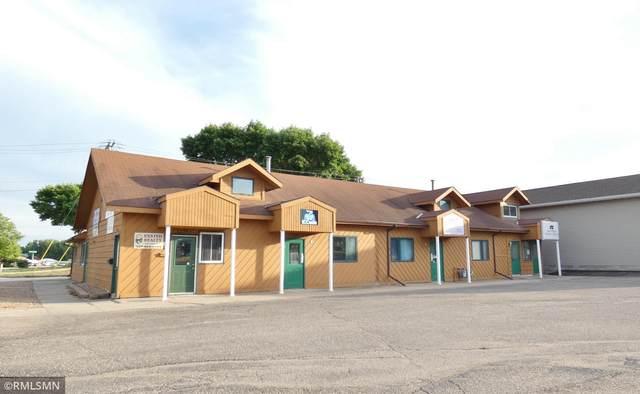 2120 10th Street E, Glencoe, MN 55336 (#6014390) :: Bos Realty Group