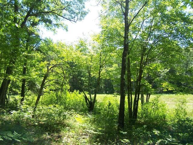 Xxx S Bear Lake Road, Danbury, WI 54830 (#6014753) :: Straka Real Estate