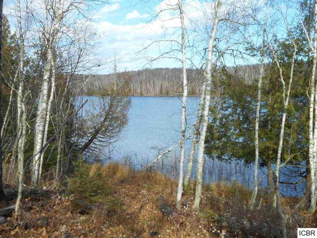 TBD Hatch Lake Rd, Marcell, MN 56657 (#6015172) :: The Smith Team