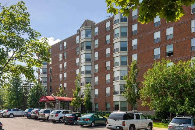 1425 W 28th Street #301, Minneapolis, MN 55408 (#6016974) :: Bos Realty Group