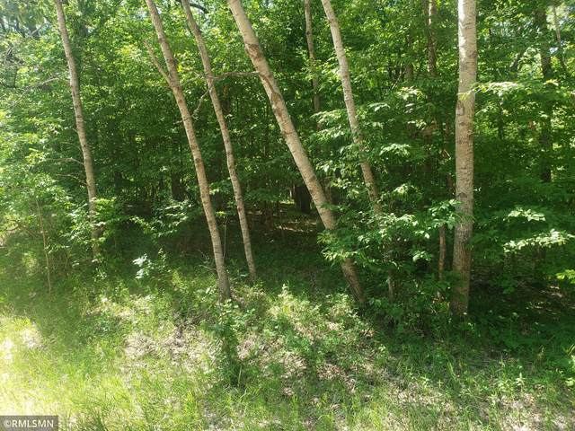 xxx Overland Drive, Fawn Lake Twp, MN 56438 (#6022020) :: Twin Cities South