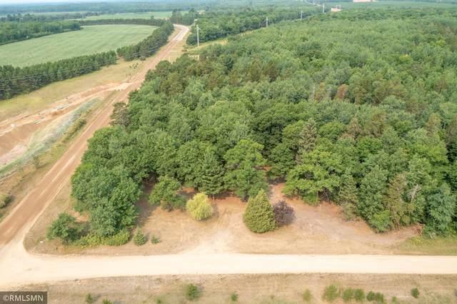 43037 Hosta Lane, Pine River, MN 56474 (#6027824) :: The Pietig Properties Group