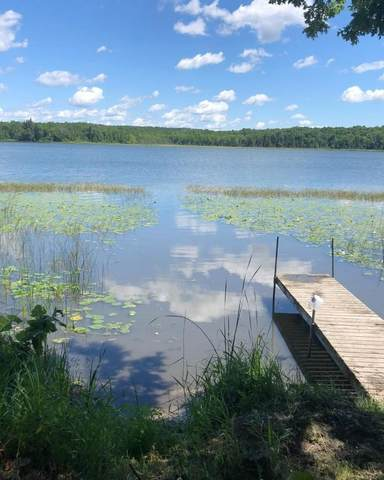 36441 County Highway 34, Ogema, MN 56569 (#6027961) :: Lakes Country Realty LLC
