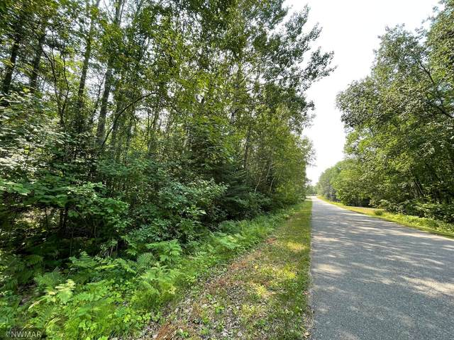 TBD Lot 5 Rolling Hills Drive NW, Northern Twp, MN 56601 (#6046739) :: Twin Cities South