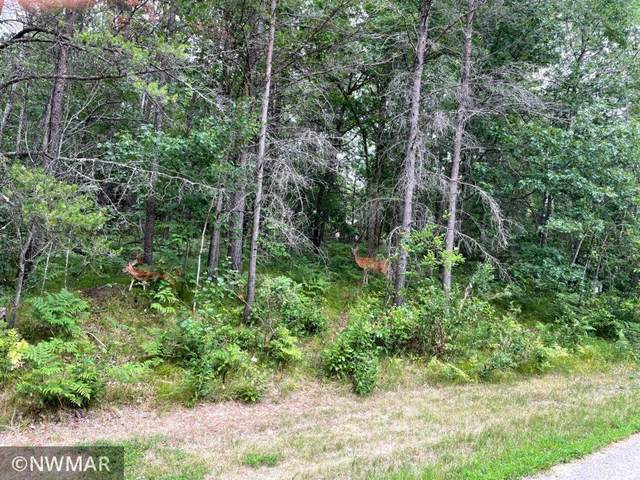 TBD Lot 11 Northern Lane NW, Northern Twp, MN 56601 (#6046767) :: Lakes Country Realty LLC