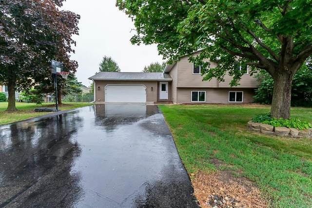 2451 135th Avenue NW, Andover, MN 55304 (#6046772) :: The Pietig Properties Group