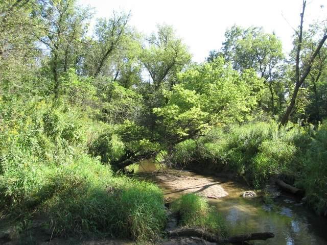10471 Jenkins Trail, Nerstrand, MN 55053 (#6047033) :: The Michael Kaslow Team