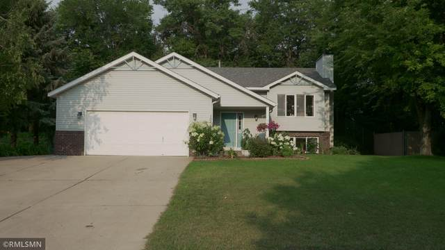 1000 Ferndale Street S, Maplewood, MN 55117 (#6068146) :: Lakes Country Realty LLC