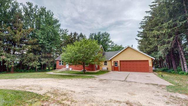 67255 386th Avenue, Lake City, MN 55041 (#6068354) :: Lakes Country Realty LLC