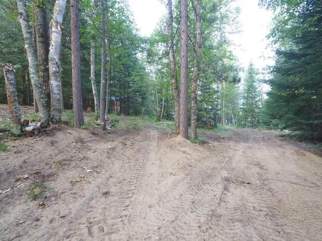20003 Little Bear Lake Road, Cook, MN 55723 (#6068408) :: The Pietig Properties Group