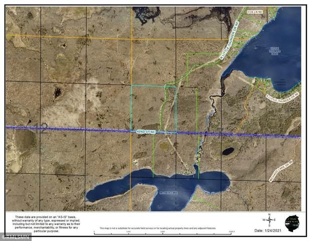 TBD N Little Thunder Drive NE, Remer, MN 56672 (#6071480) :: The Michael Kaslow Team